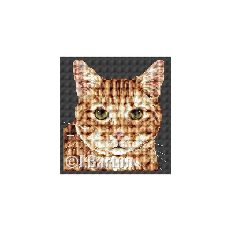 Ginger tom cat cross stitch chart