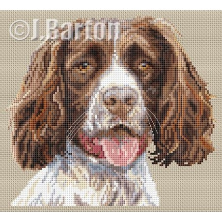 Springer spaniel (cross stitch chart by post)