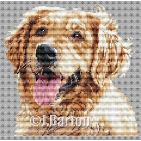 Golden retriever (cross stitch chart by post)