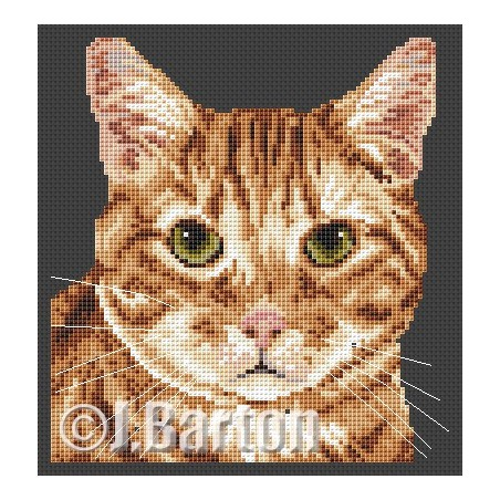 Ginger tom cat (cross stitch chart by post)