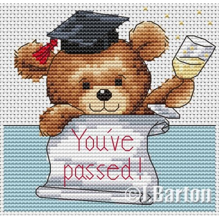 You've passed (cross stitch chart download)