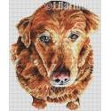 Cute retriever cross stitch chart download