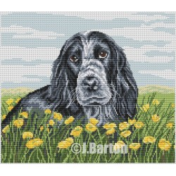 Cocker spaniel (cross stitch chart download)