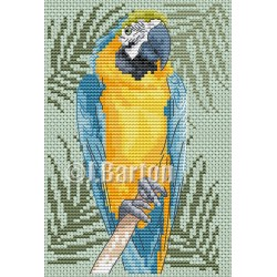 Blue and gold macaw (cross stitch chart download)